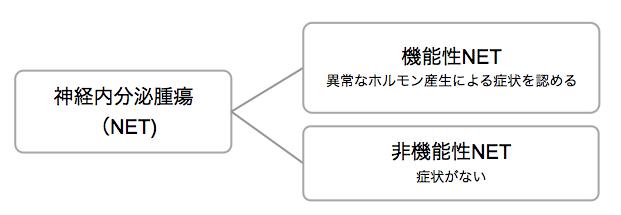NETの分類